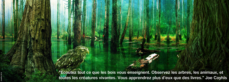 medecineman_amour_terre_mere