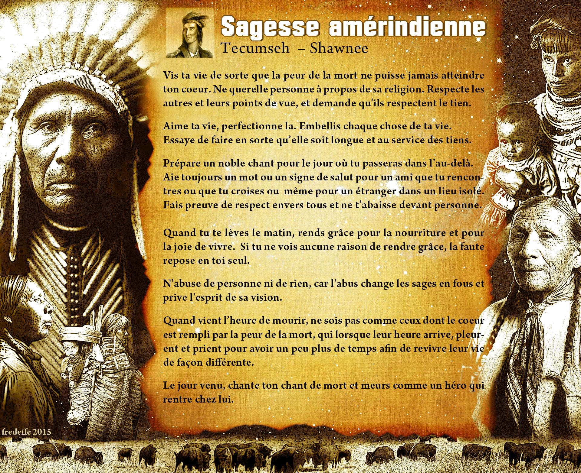 Célèbre Sagesse amérindienne : Tecumseh, le jaguar celeste et petite  WT09